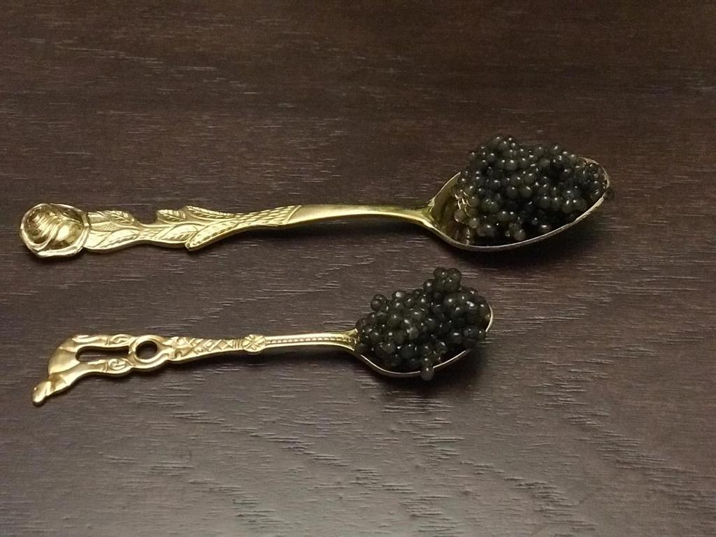 Beluga Caviar different taste, flavor, price of Iran caviar production from Caspian sea