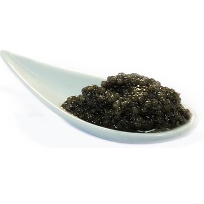 Sevruga Caviar for export - iranian caspian sea caviar